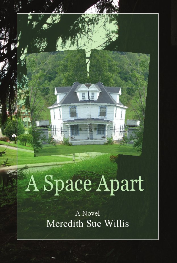 A Space Apart Book Cover Image