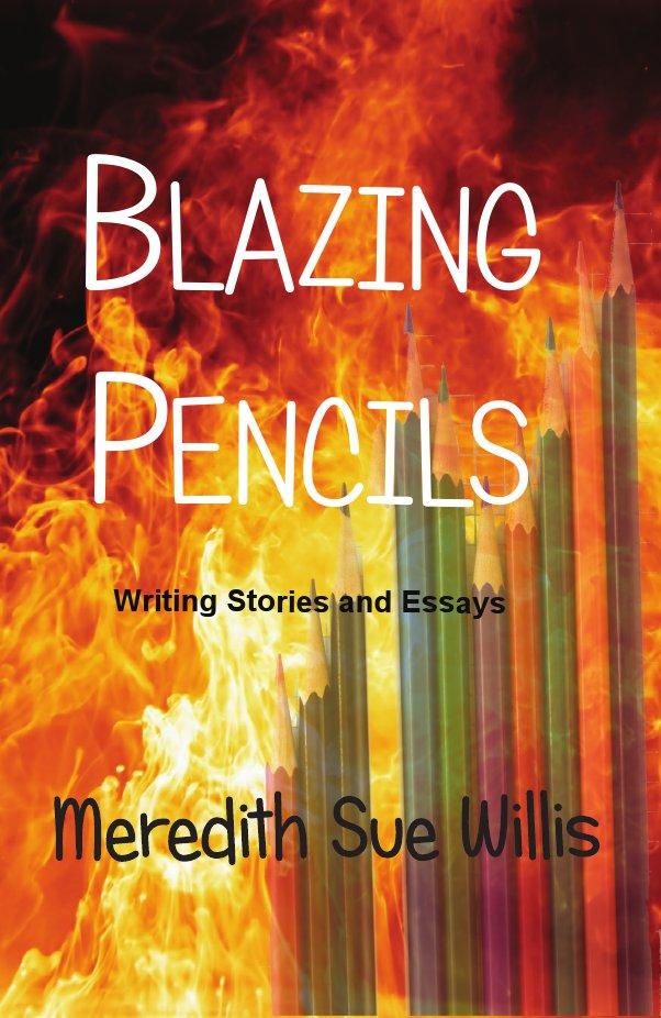 Meredith Sue Willis Books